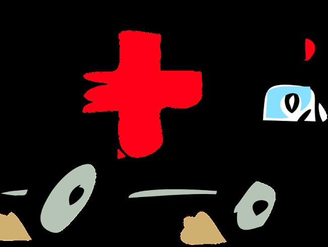 crise du Covid vue par le secours catholique